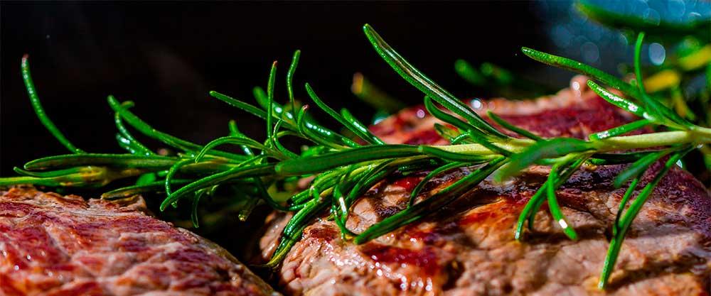 Österreichischer Wein als Speisebegleiter zu Fleisch