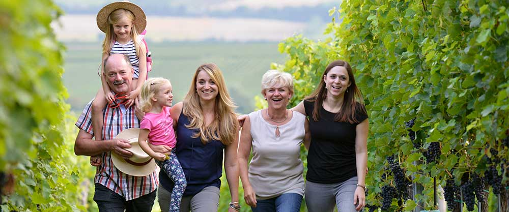 Österreichischer Wein Weingut Netzl